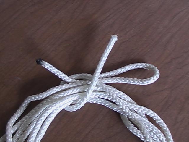 File:Alpine Coil Knot Step3.jpg