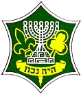 Israel Boy and Girl Scouts Federation