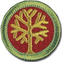 GenealogyMeritBadge.jpg