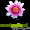 Logo SP smal.png