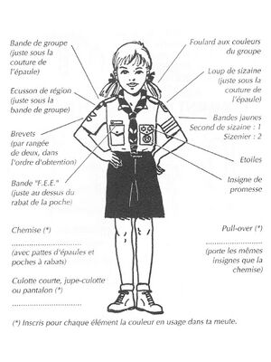 Uniforme louveteaux FEE.jpg