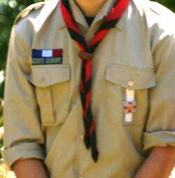 Second de patrouille scoutopedia l 39 encyclop die scoute for Jeu scout exterieur