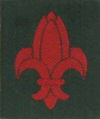 Fédération Indochinoise de Scoutisme