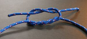 Surgeon's knot (tying).jpg