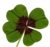 Icone botanique01.png