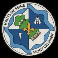 Insigne du Territoire