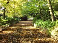 Arrowe Park à l'automne