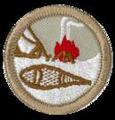 Scoutisme d'hiver