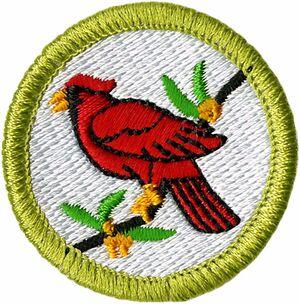 BirdStudyMeritBadge.jpg