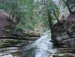 Un pont de corde