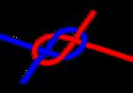 Un nœud de carrick