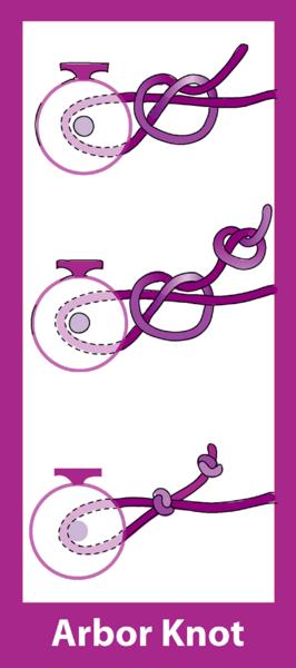File:Arbor knot diagram.png